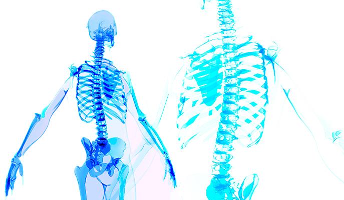 Thinking outside the Skeleton